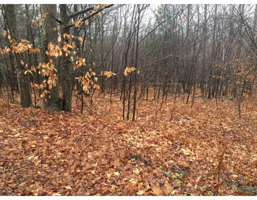 Land for Sale at Goss Hill Road Huntington, Massachusetts 01050 United States