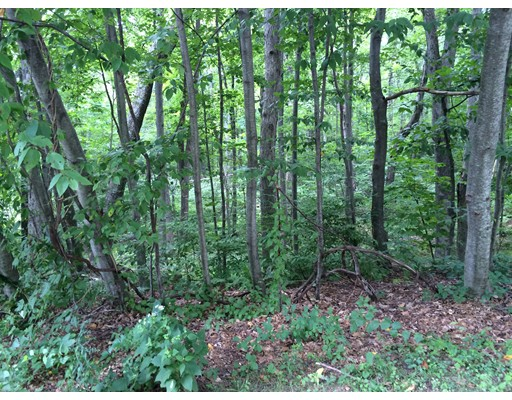 Land for Sale at 10 Iroquois Lane Wilbraham, 01095 United States