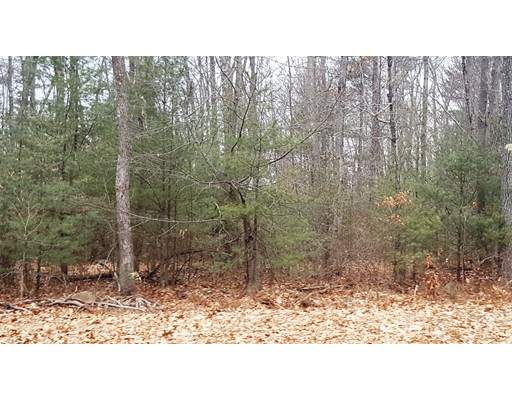 Land for Sale at 13 Coldbrook Drive Ware, 01082 United States