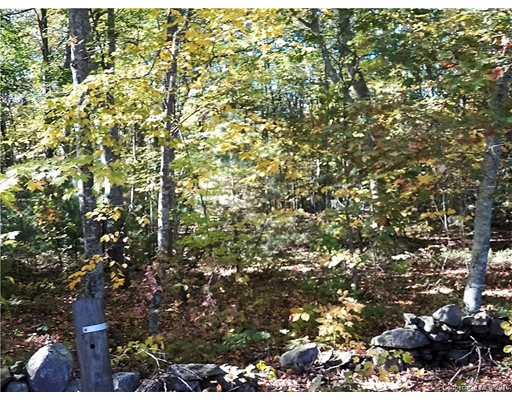 Land for Sale at 74 Drown Road Pomfret, Connecticut 06259 United States