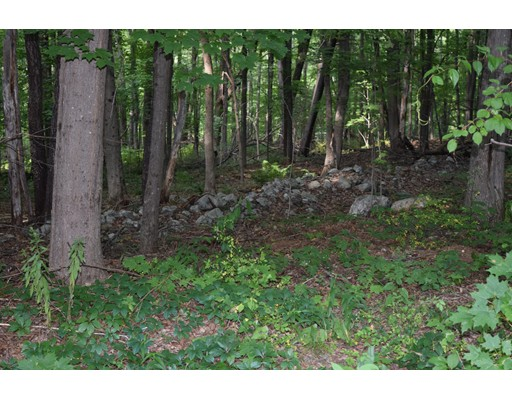Land for Sale at 1 Amherst Road 1 Amherst Road Leverett, Massachusetts 01054 United States
