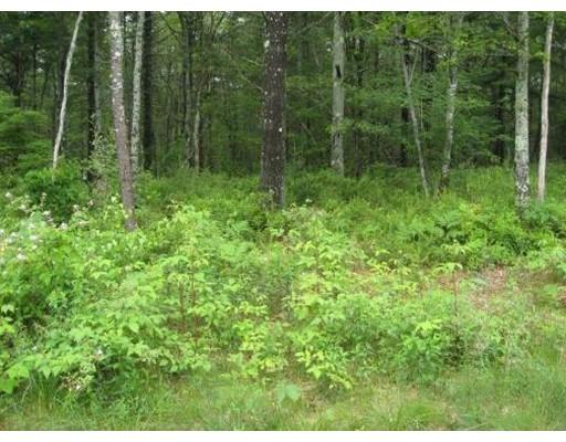 Land for Sale at 4 Deer Run Marion, Massachusetts 02738 United States