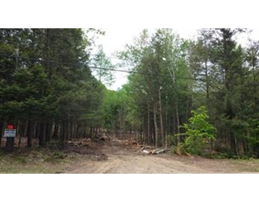 Land for Sale at Pond Brook Rd (Rt 66) Pond Brook Rd (Rt 66) Huntington, Massachusetts 01050 United States