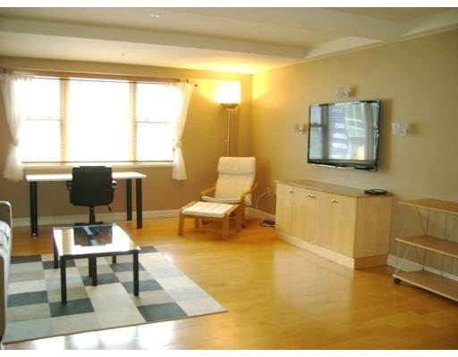 独户住宅 为 出租 在 185 Massachusetts Avenue 波士顿, 马萨诸塞州 02115 美国
