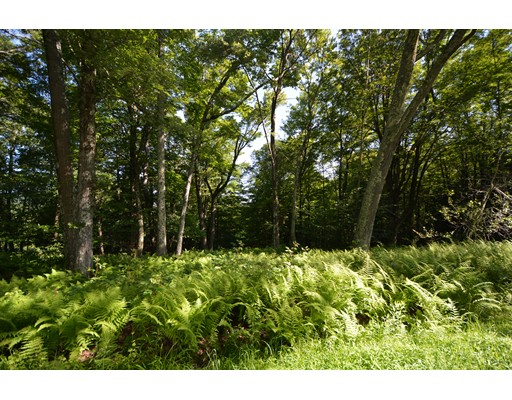 Land for Sale at 11 Mountain Road Mount Washington, Massachusetts 01258 United States