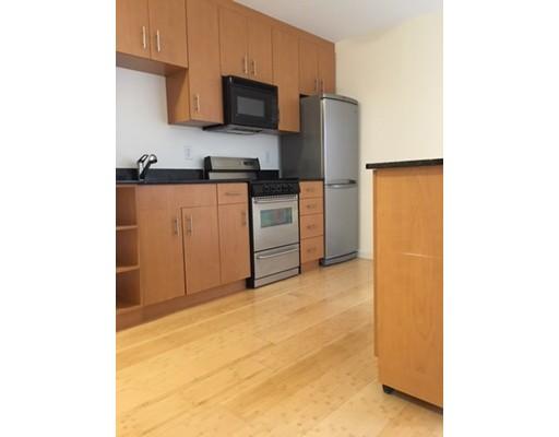 独户住宅 为 出租 在 461 Park Drive 波士顿, 马萨诸塞州 02215 美国