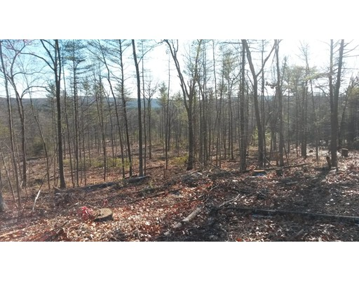 Land for Sale at Buffam Road Pelham, Massachusetts 01002 United States