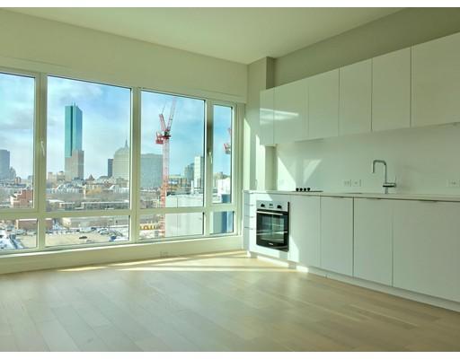 Additional photo for property listing at 266 East Berkeley Street  波士顿, 马萨诸塞州 02118 美国