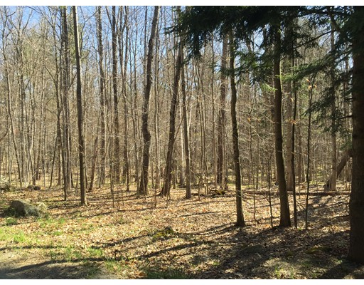 Land for Sale at Newell Cross Road Rowe, Massachusetts 01367 United States