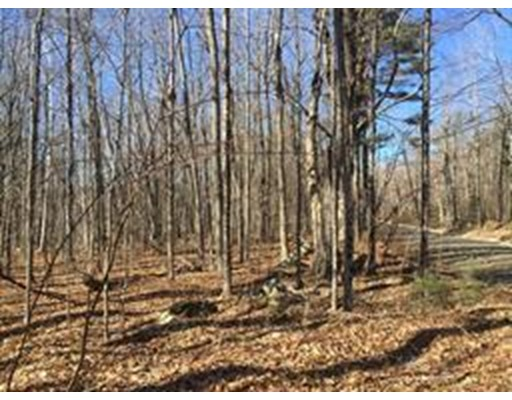 Land for Sale at W Hill Road Middlefield, 01243 United States