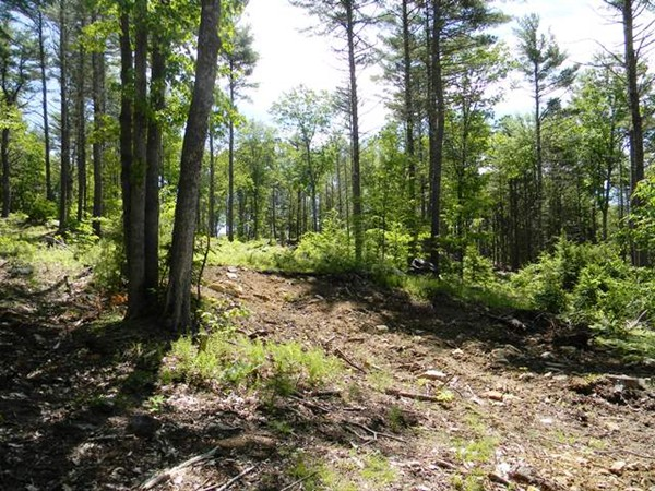 Property for sale at 850 Royalston Rd, Phillipston,  MA 01331