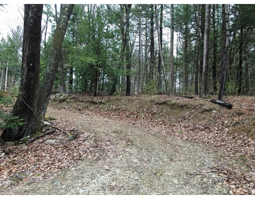 Land for Sale at 146 Ashfield Road Williamsburg, 01096 United States