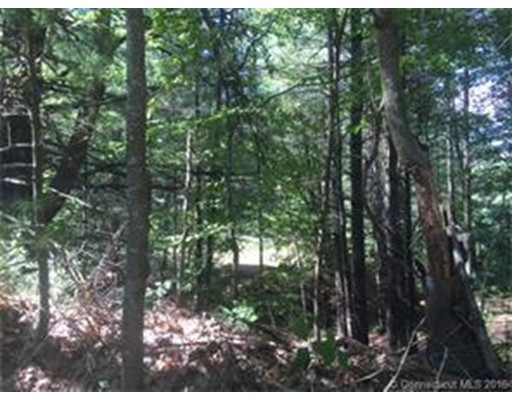 Land for Sale at 16 Petz Stafford, Connecticut 06076 United States
