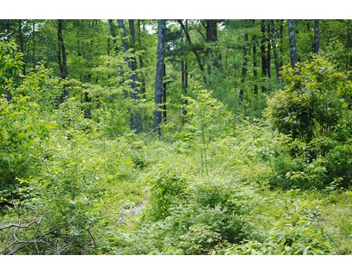 Land for Sale at Pleasant Street Leicester, Massachusetts 01542 United States
