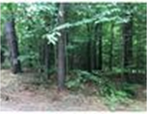 Land for Sale at Owl Nest Lane Tolland, 01034 United States