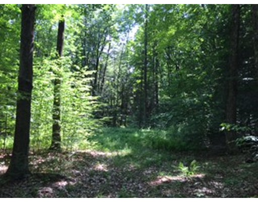Land for Sale at Shelburne Falls Road Conway, Massachusetts 01341 United States