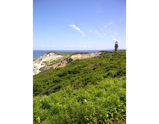 Single Family Home for Sale at 5 Aquinnah Circle Aquinnah, Massachusetts 02535 United States