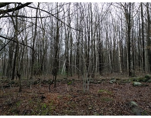 Land for Sale at 97 Haynes Hill Road Wales, Massachusetts 01081 United States
