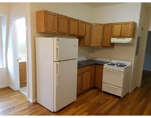 Single Family Home for Rent at 24 Mount Everett Street Boston, Massachusetts 02125 United States