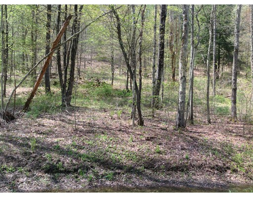 Land for Sale at 8 Ben Hale Road Gill, Massachusetts 01376 United States