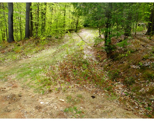 Land for Sale at Bullhorn Drive Gilmanton, New Hampshire 03237 United States