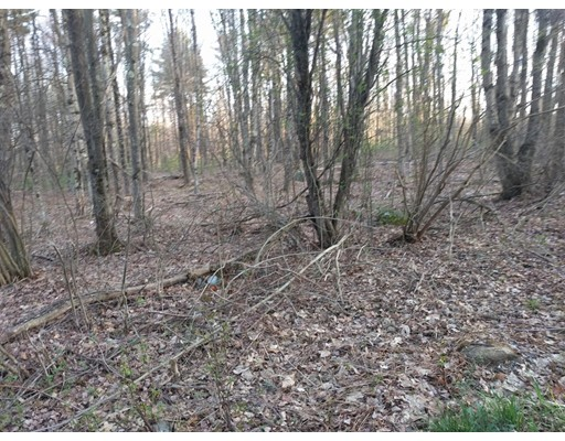 Lot 8 Wauwinet Road, Barre, MA 01005