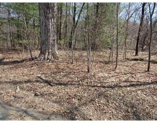 Land for Sale at Town Hill Road Middlefield, 01243 United States