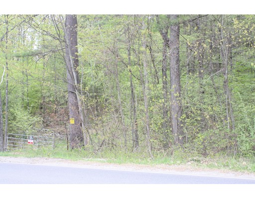 Mountain Rd, Erving, MA 01344