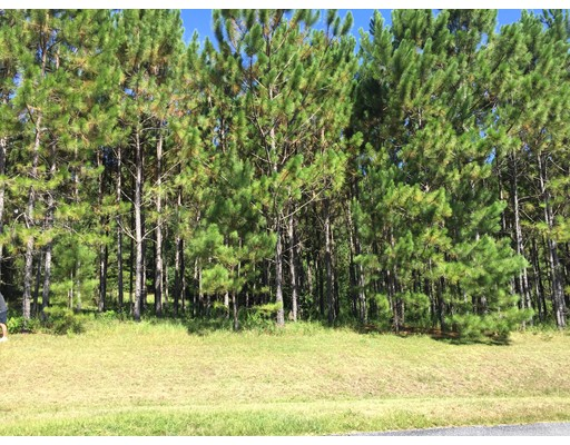 Land for Sale at 3384 N. Canterbury Lake Drive Hernando, Florida 34442 United States
