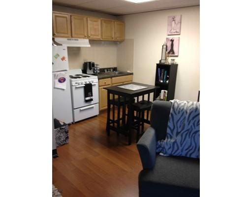 独户住宅 为 出租 在 47 Bay State 波士顿, 马萨诸塞州 02215 美国