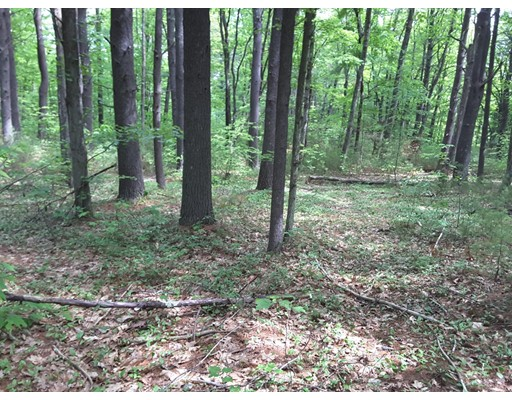 Land for Sale at Bernard Whitney Road New Braintree, 01531 United States