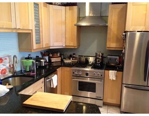 独户住宅 为 出租 在 231 High Street 布鲁克莱恩, 马萨诸塞州 02445 美国