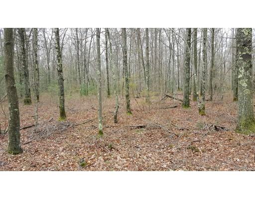 土地 为 销售 在 45 Green Street Berkley, 马萨诸塞州 02779 美国
