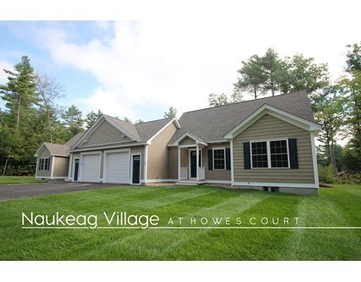Condominium for Sale at 17 Howes Court Ashburnham, Massachusetts 01430 United States