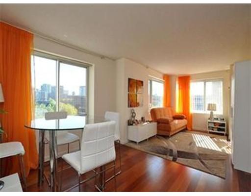 独户住宅 为 出租 在 8 Museum Way 坎布里奇, 马萨诸塞州 02141 美国
