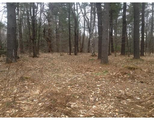 Terreno por un Venta en Mollison Hill Road Mollison Hill Road Goshen, Massachusetts 01032 Estados Unidos
