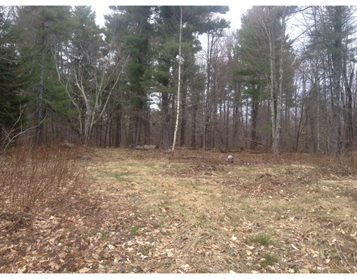 Terreno por un Venta en Mollison Hill Road Goshen, Massachusetts 01032 Estados Unidos