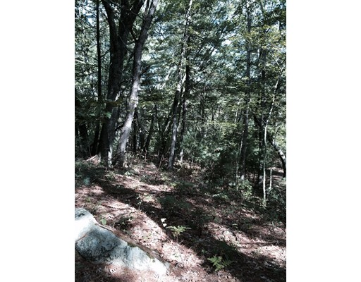 Merriam Rd, Grafton, MA, 01519