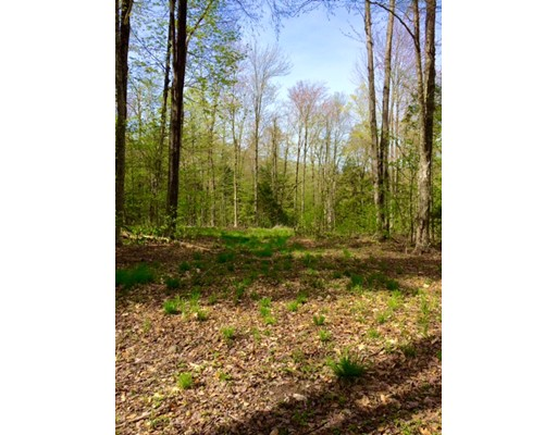 Land for Sale at 51 Stone Hill Road Rowe, Massachusetts 01367 United States