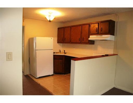 独户住宅 为 出租 在 100 West Springfield 波士顿, 马萨诸塞州 02118 美国