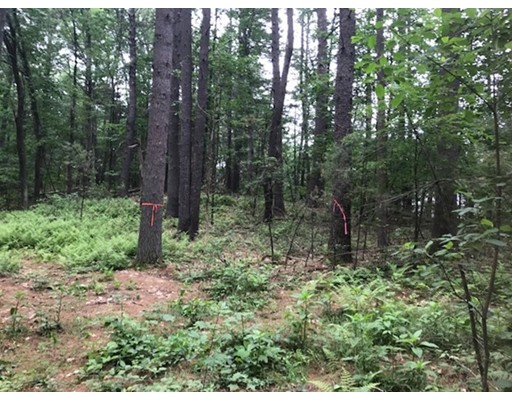 Additional photo for property listing at Chicopee Row  Groton, Massachusetts 01450 Estados Unidos