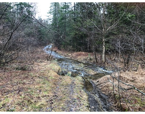 Lot 7 Adams, Savoy, MA 61874