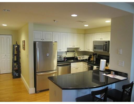 Additional photo for property listing at 1387 Washington Street  Boston, Massachusetts 02118 United States