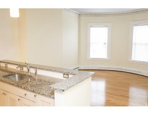 独户住宅 为 出租 在 478 Massachusetts 波士顿, 马萨诸塞州 02118 美国