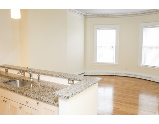 Additional photo for property listing at 478 Massachusetts  波士顿, 马萨诸塞州 02118 美国