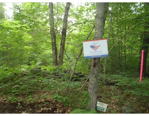 Land for Sale at 426 Old East Petersham, 01366 United States