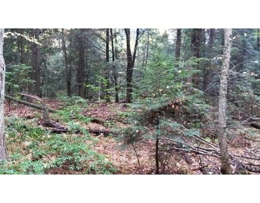 Land for Sale at 1 Birch Circle Chester, 01225 United States