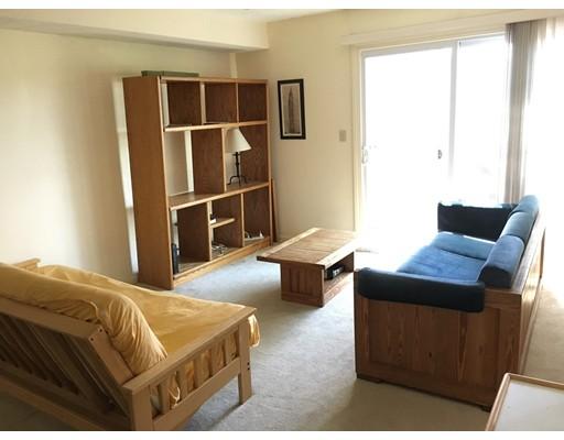 独户住宅 为 出租 在 306 Tappan 布鲁克莱恩, 马萨诸塞州 02445 美国