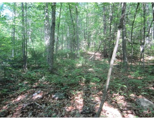 Additional photo for property listing at 9 Summit Street 9 Summit Street Belchertown, Massachusetts 01007 Estados Unidos