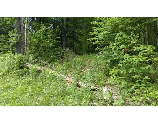 Land for Sale at 1012 Main Road 1012 Main Road Granville, Massachusetts 01034 United States
